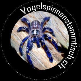 Spinnen- und Insektenbörse Birmensdorf
